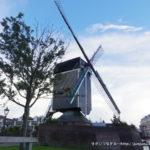 オランダ】世界第4位の国で、幸せについて考えた